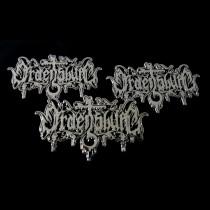 ORDENSBURG - Logo Metall Pin