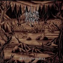 AIHOS - Hävitysen Maa LP