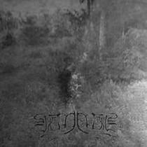 VEINELIIS - Strained Movements Towards Imminent Death LP